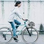 早割2018:クロスバイクカタログ